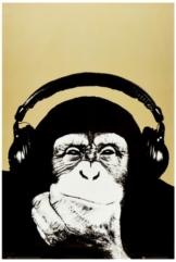 Monkee Poster (91 x 61 cm) - 1
